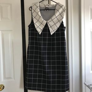 NWOT Retrolicious Big Collar Retro Shift Dress